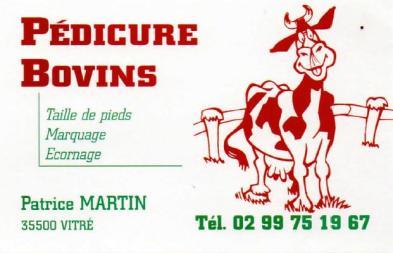 Logo Patrice Martin